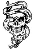 Skull With Snake Stock Photography