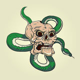 Skull and snake tattoo. Vector illustration on bright background Royalty Free Illustration