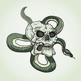 Skull and snake tattoo. Vector illustration on bright background Stock Illustration