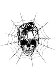 Skull spider and web Royalty Free Stock Photo