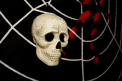 Skull and spider webs, Ghost on halloween, Stock Photography
