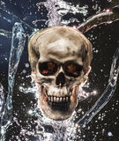 Skull Splash Stock Photography