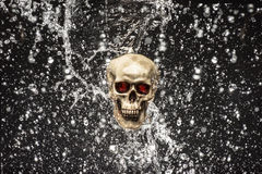 Skull Splash Royalty Free Stock Photography