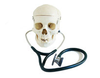 Skull with Stethoscope Stock Images