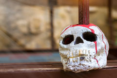 Skull is strung on a pole. Decorative artificial skull of a human head pierced with a spear, represents the backdrop for Halloween Royalty Free Stock Photo