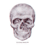 Skull 01 Royalty Free Stock Photos