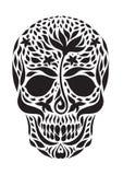 Skull 2.3 Stock Image