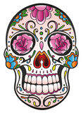 Skull, sugar skull Stock Photography
