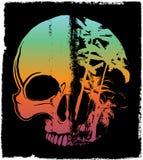 Skull Summer T shirt Graphic Design Royalty Free Stock Photos