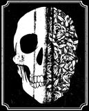 Skull T shirt Graphic Design Stock Image