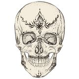 Skull and tattoos Royalty Free Stock Images