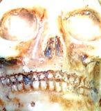 Skull with teeth and eye orbits Stock Photo