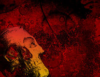 Skull and texture, landscape l Stock Images