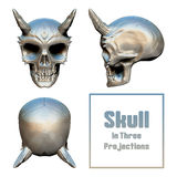 Skull In Three Projections. Skull with horns three projections on the triangle and background with an inscription. On a white background. It can be used as a Stock Photo