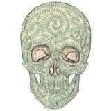 Tracery skull. Royalty Free Stock Photography