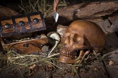 Skull and Treasure Chest Stock Photo
