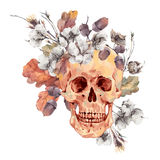 Skull and twigs, cotton flower, yellow oak leaves Stock Photo