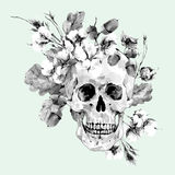 Skull and twigs, cotton flower, yellow oak leaves Royalty Free Stock Image