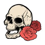 Skull with two roses. Vector illustration Stock Photo