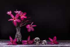 Skull vase of flowers Stock Photo