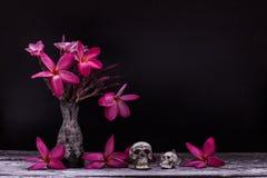 Skull vase of flowers Stock Photo