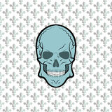 Skull vector, background lily flower Royalty Free Stock Photography