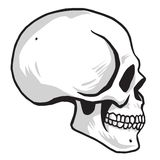 Skull Vector illustration Image Royalty Free Stock Photo