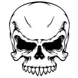 Skull vector Stock Images
