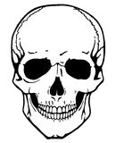Skull vector Stock Photo