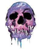 Skull vector Royalty Free Stock Photo