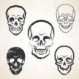 Skull vector sketches set. In different styles Royalty Free Stock Image