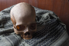 The Skull in war symbol Royalty Free Stock Photos