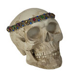 Skull Wearing Antique Gem Jewelry Stock Photography