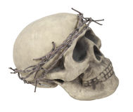 Skull Wearing Barbed Wire Crown Stock Image
