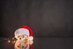 Skull wearing Santa hat Stock Image