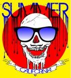 Skull wearing sunglasses Stock Photos