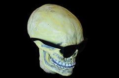 Skull wearing sunglasses Stock Photography