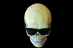 Skull wearing sunglasses Royalty Free Stock Images