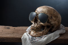 Skull wearing sunglasses Royalty Free Stock Photos