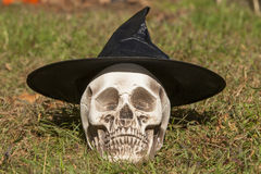 Skull wearing a witches hat. A skull wearing a witches hat waits patiently for Halloween Stock Image