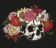 Skull wearing a wreath of peonies. Royalty Free Stock Images