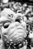 Skull. White skull in bangkok temple, Thailand Stock Photo