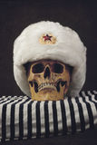 Skull with white russian Uschanka Royalty Free Stock Photography
