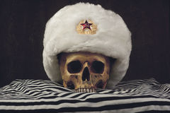 Skull with white russian Uschanka Royalty Free Stock Photo