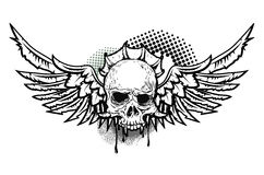skull wings 库存照片