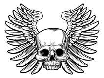 skull wings 图库摄影