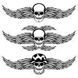 skull wings 免版税图库摄影