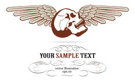 Skull wings label. In vintage style Stock Photo