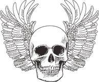 SKULL AND WINGS OPEN Stock Photos