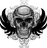 Skull and Wings Stock Photos